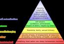 Introducere in economie comportamentala